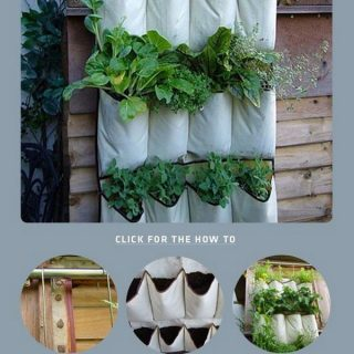 35 Awesome Vertical Garden Ideas