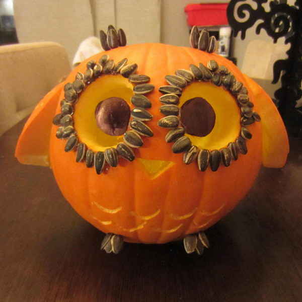 Little Owl Carved Pumpkin with Wings.