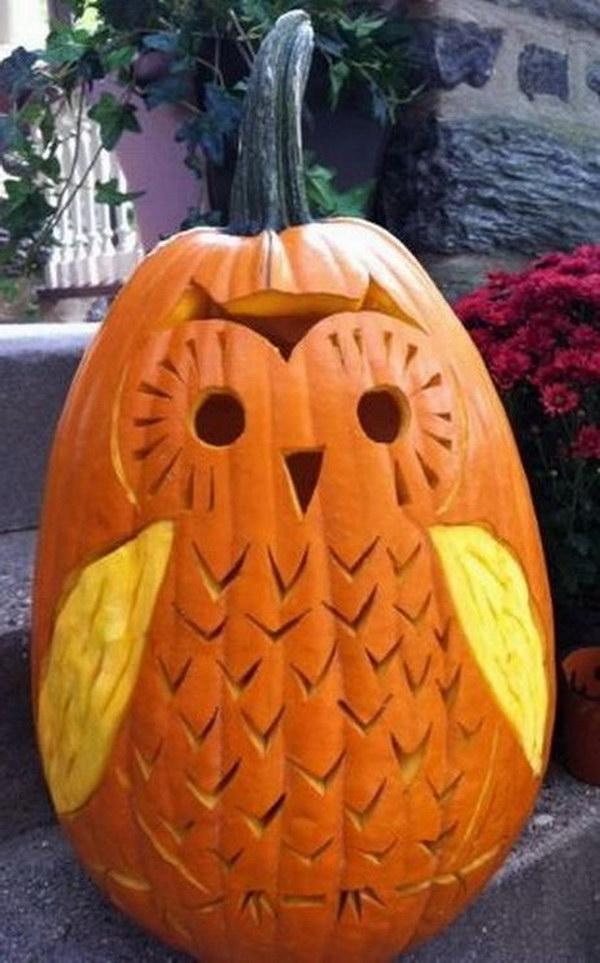 Cute Owl Pumpkin Carving.