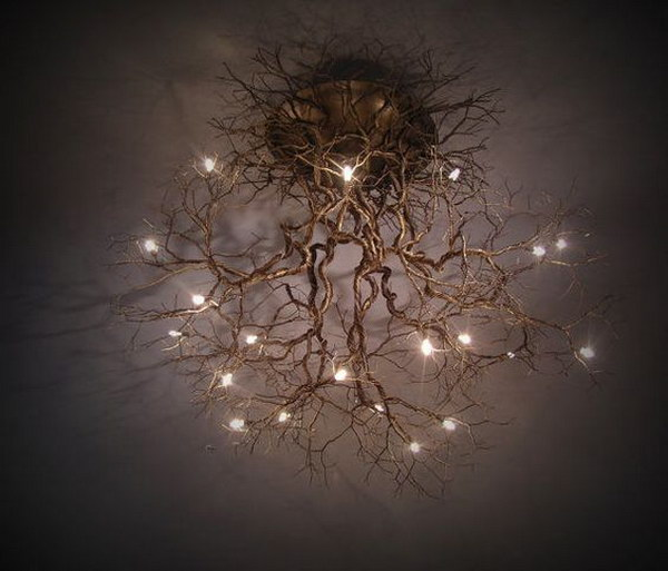 Tree Root Chandeliers.
