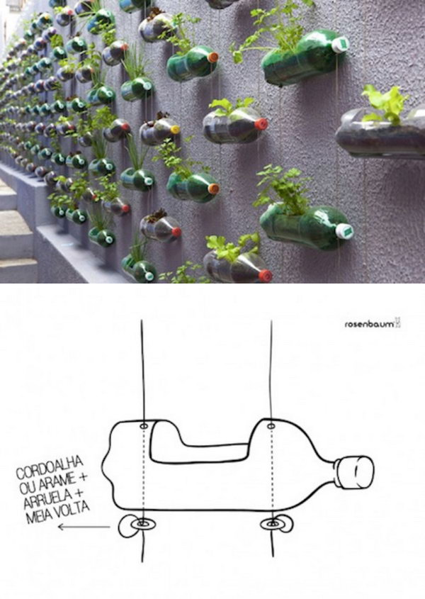 Recycled Plastic Bottle Vertical Garden.