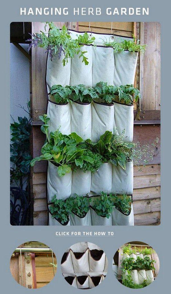 DIY Shoe Rack Hanging Herb Garden