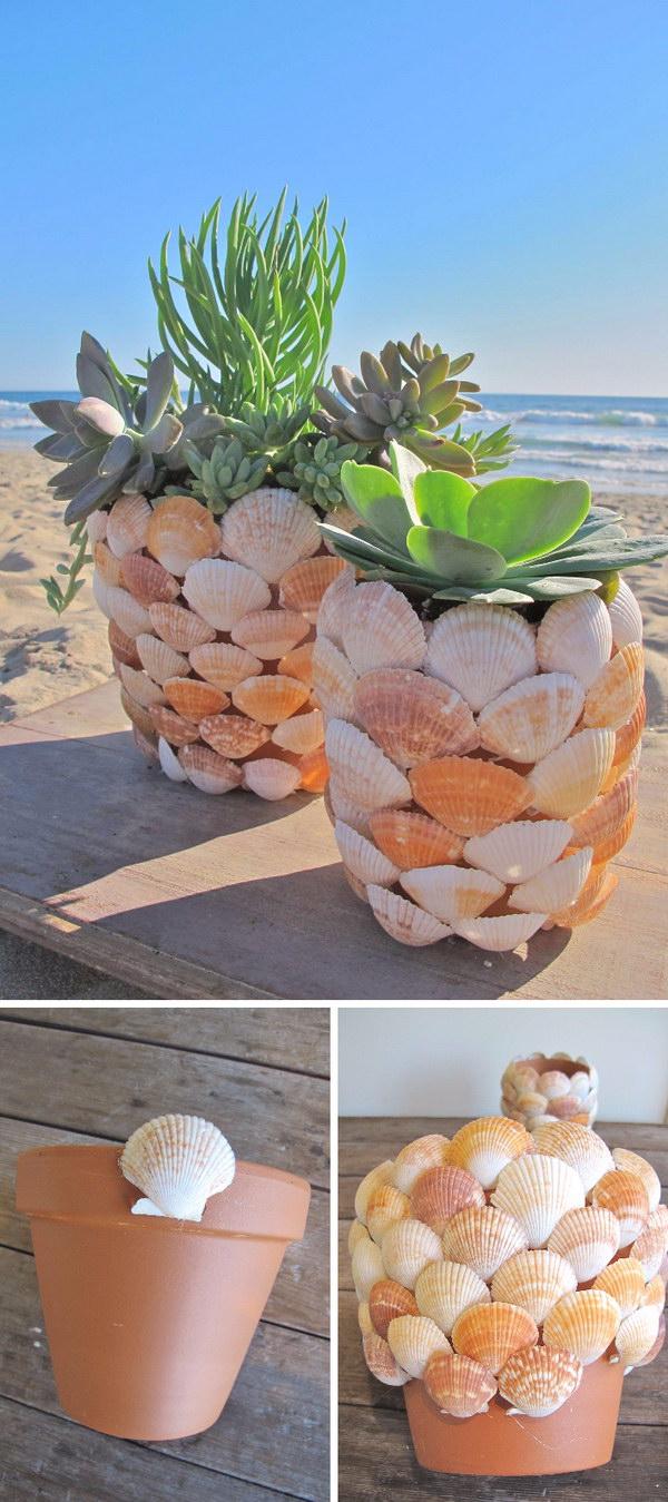 DIY Seashell Succulent Planter.