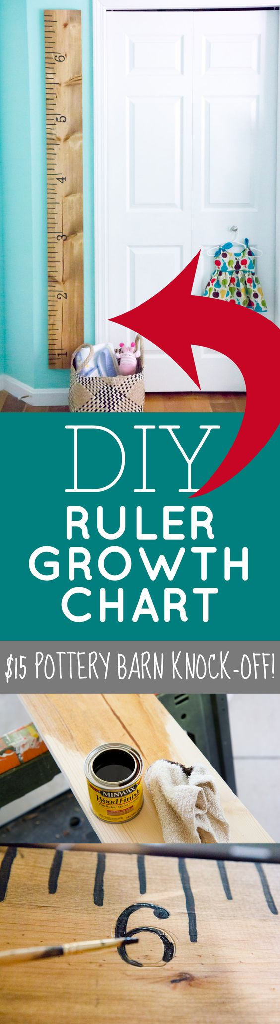 Giant Ruler Growth Chart.