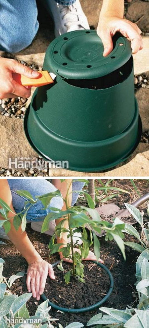Prevent Invasive Plants from Spreading Using a Plastic Pot.