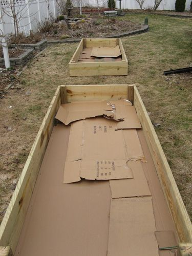 Make a Garden Bed over an Existing Lawn with Cardboard.