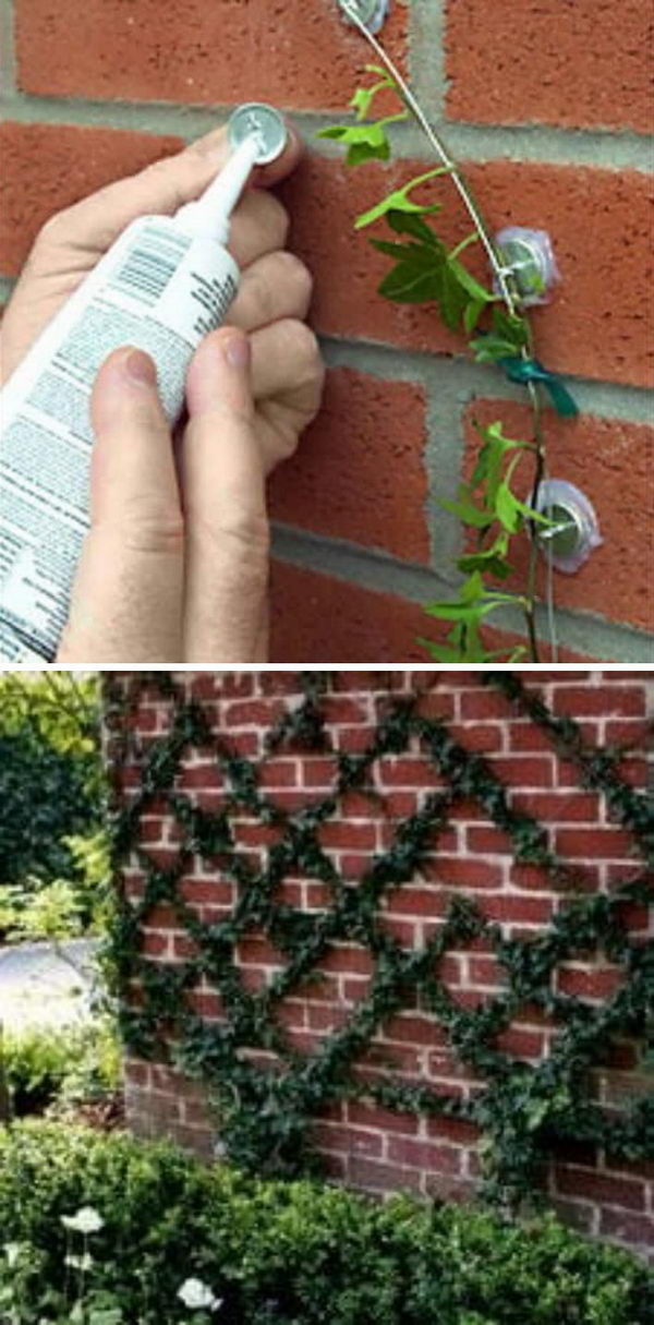 This brilliant kit lets you create a trellis in any shape that you want.