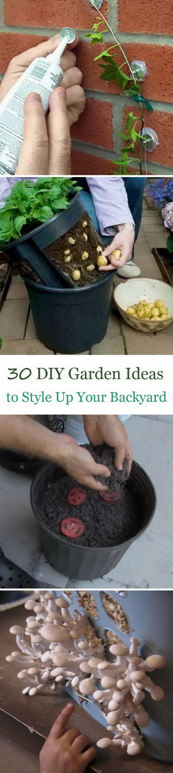 Lots of DIY Garden Ideas to Style Up Your Backyard to The Next Level.