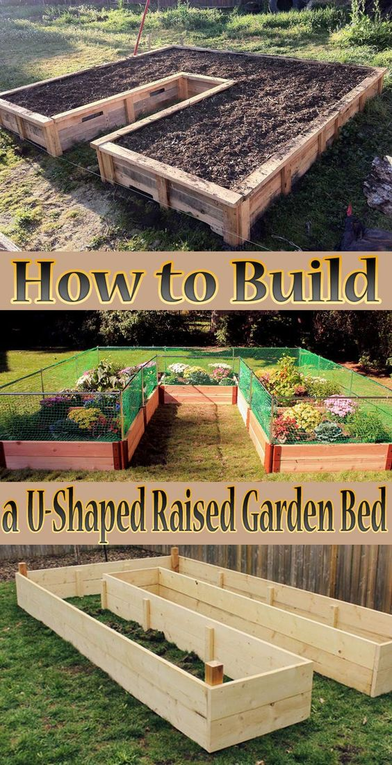 Building A U-Shaped Raised Garden Bed.