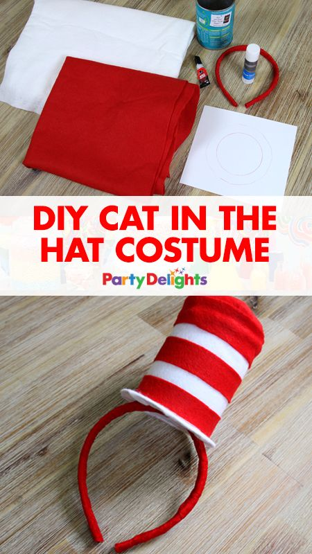 DIY Cat In The Hat Costume.