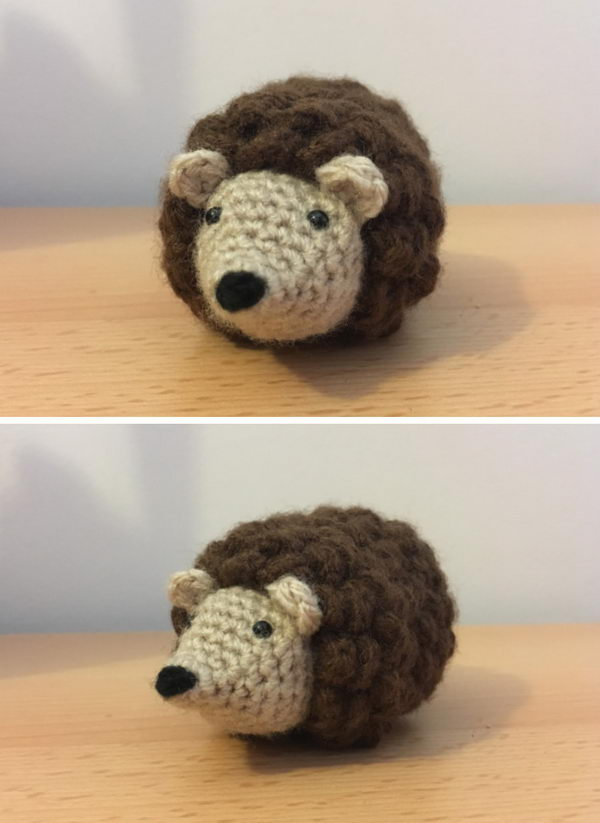 Mini Hedgehog.